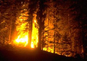 Лесной пожар в провинции Квебек