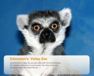 Valley Zoo зоопарк Эдмонтон Саскачеван