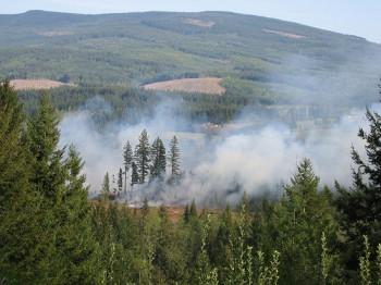 Лесной пожар Манитоба Канада