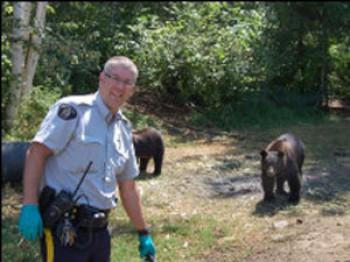 Медведь охраняет плантация марихуаны Канада