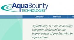 Aqua Bounty производитель генетически модифицированного лосося