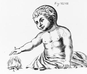 Иллюстрация из книги Rene Descartes' De Homine
