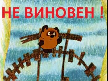 Медведь не виноват