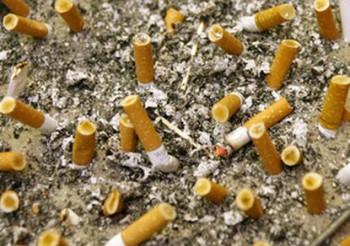 Манитоба контрафакт сигареты