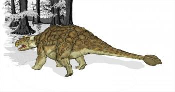 Анкилозавр Альберта