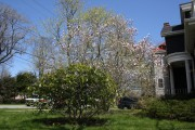 Весна в Галифаксе, Новая Шотландия